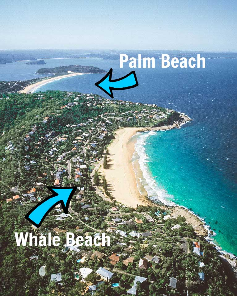 whale-beach-palm-beach-ariel-shot
