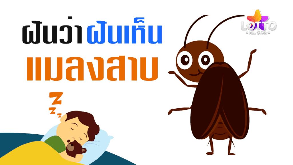 ฝันเห็นแมลงสาบ