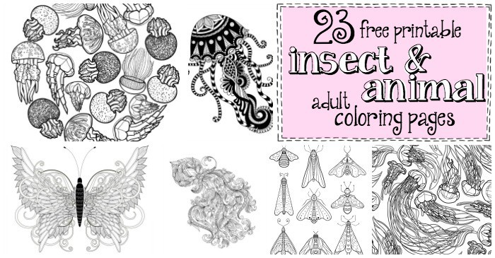 easy animals and insect adult coloring pages fb