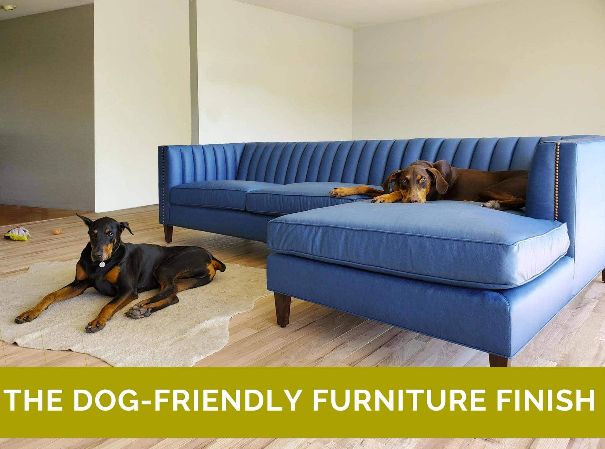 Dog Friendly Furniture Finishes