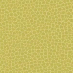 Promessa<br/>Mustard