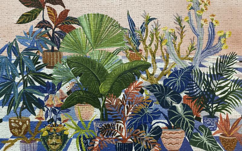 Cloudberries Backyard puzzle