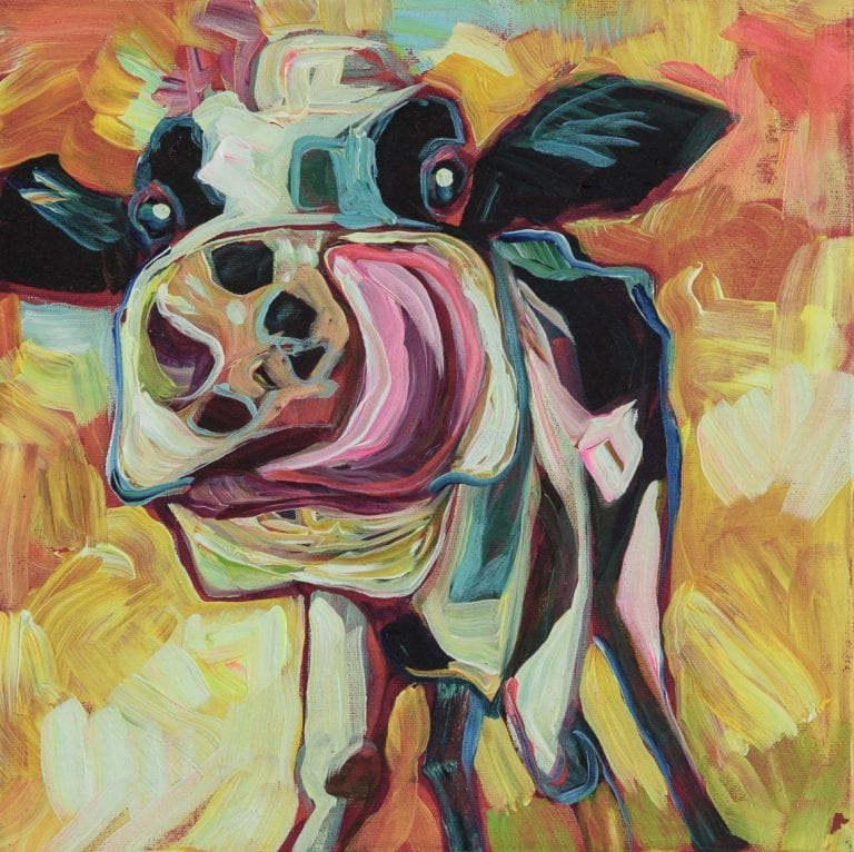 Crazy for cows: