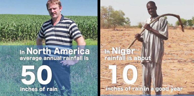 A global report card