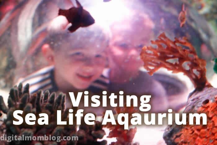 Visiting Sea Life Aqauarium