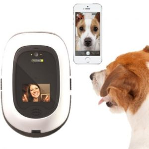 PetChatz Pet Camera & Treat Dispenser
