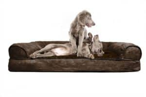 FurHaven Orthopedic Dog Couch Jumbo Review