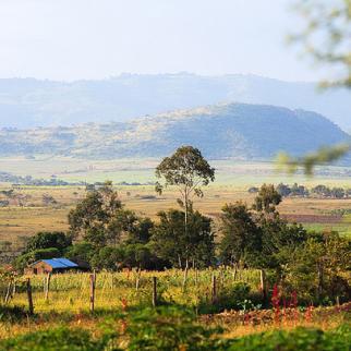 Kenya's Rift Valley. Despite new legislation, resolving disputes over land ownership will pose significant challenges. (Photo: Greg Westfall/Flickr)