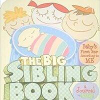 The Big Sibling Book