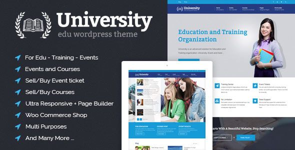 learndash wordpress theme