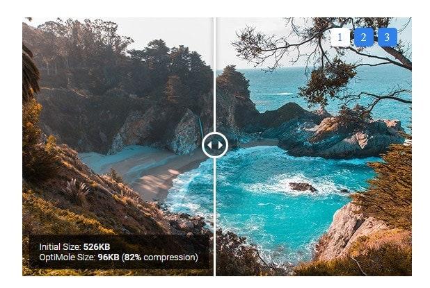 optimole image optimization service