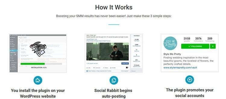 social rabbit dropshipping