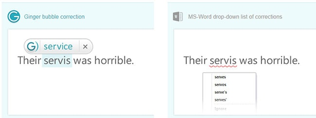 ginger vs ms word