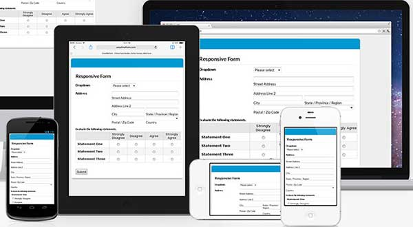 responsive wordpress forms