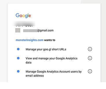 monsterinsights access to google analytics