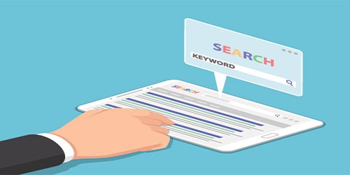 keywords you rank for from website dashboard
