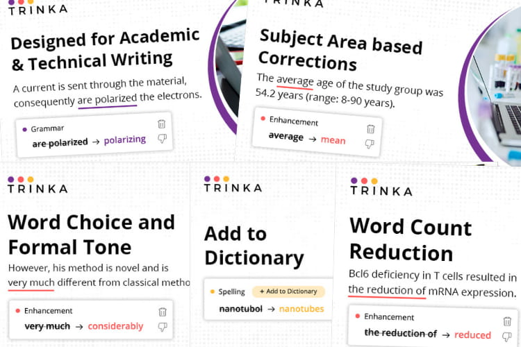Trinka AI features.