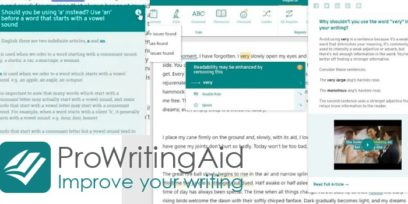 ProWritingAid review pros and cons.
