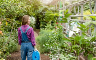 6 Reasons to Become More Self Sufficient