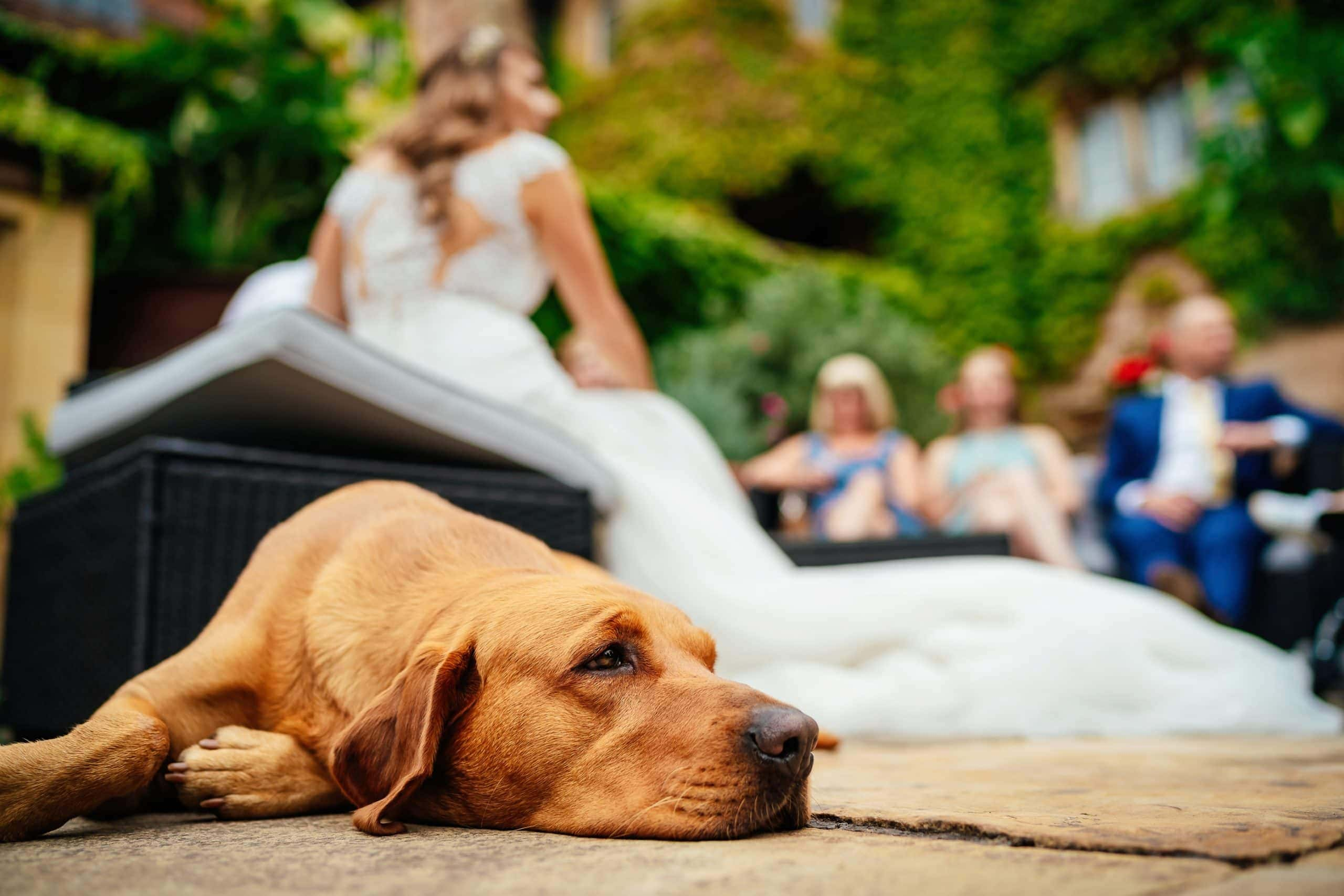 Maunsel House Wedding Photographer