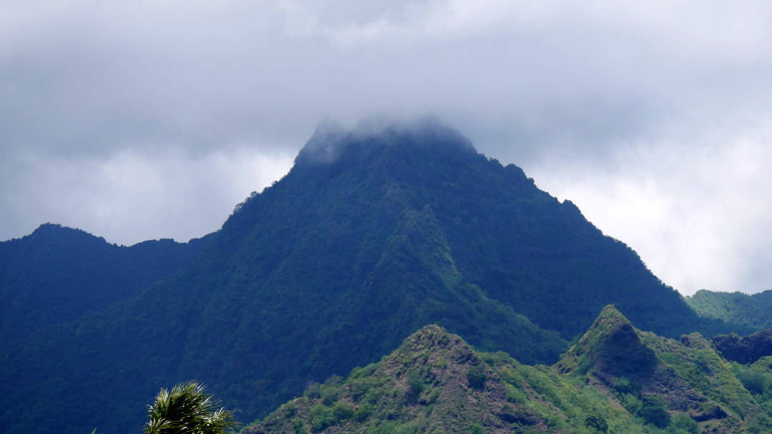 Fog on the top of a mountain in Moorea