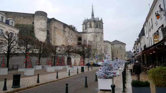 Street view of Chateau d'Amboise