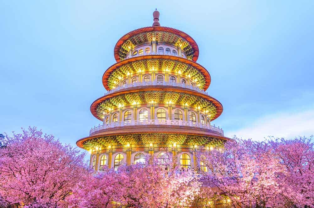 Cherry Blossoms @ Tien-Yuan Temple