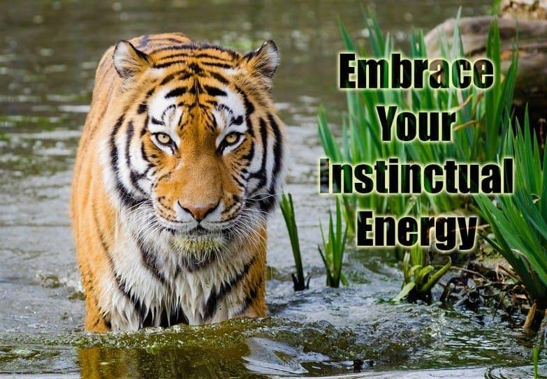 Meet the Selves - Instinctual Energy