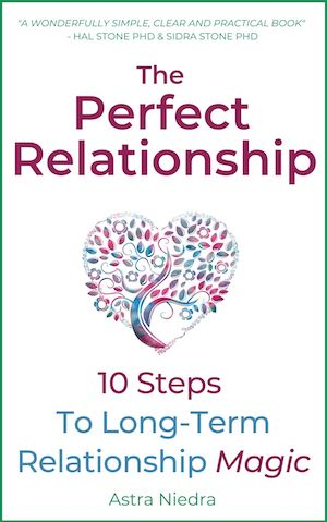 The Perfect Relationship by Astra Niedra