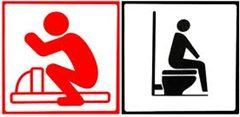 squat toilet vs western sit down toilette