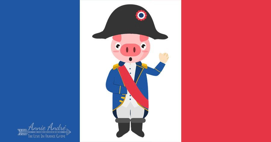 There is no French law that prohibits you from naming your pig Napoleon in France