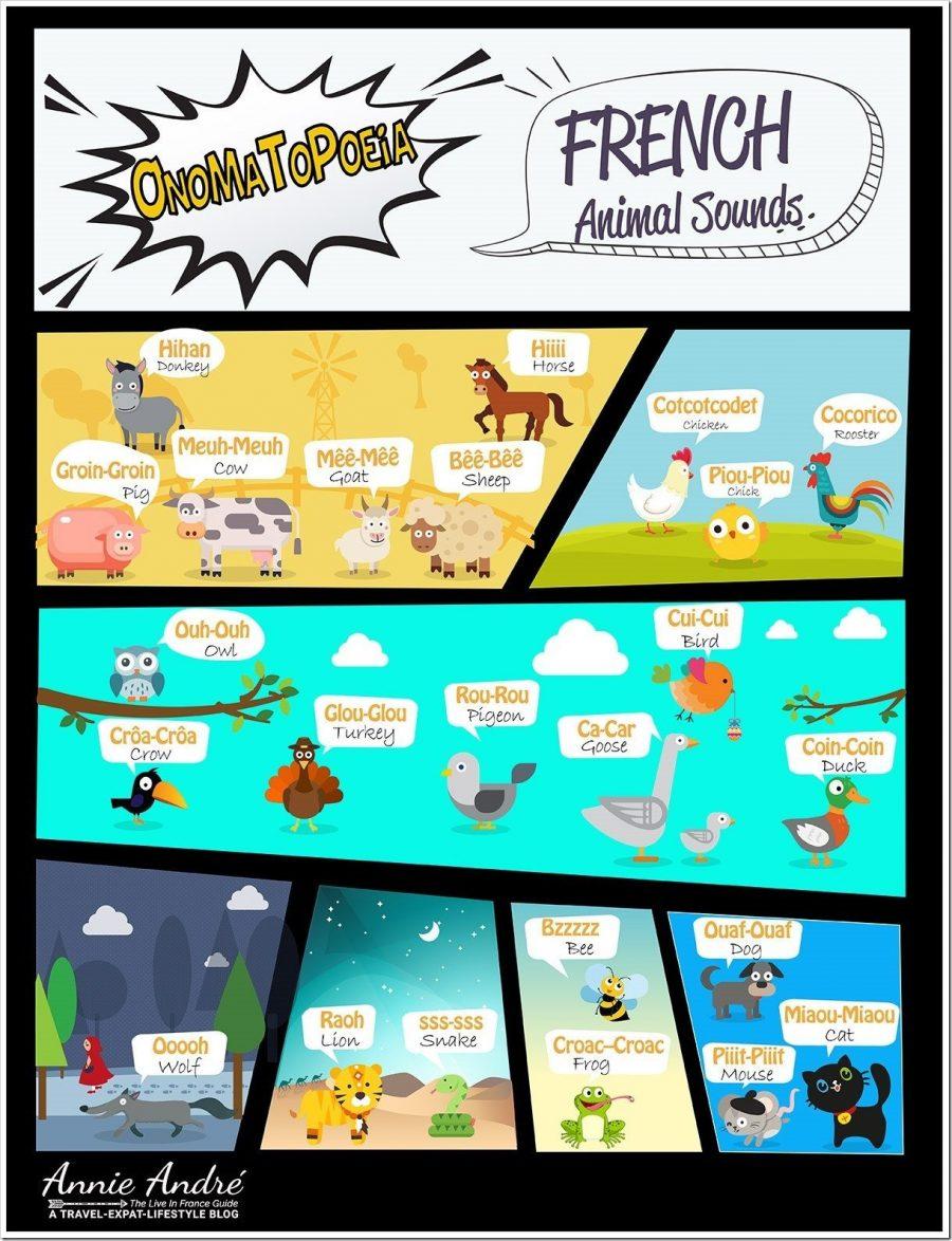 onomatopoeia: French animal sounds infographic
