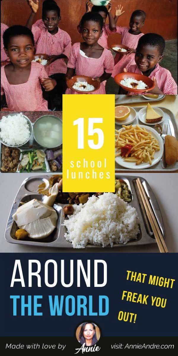 pintrest pin about 15 School Lunches Around The World That Might Freak You Out!