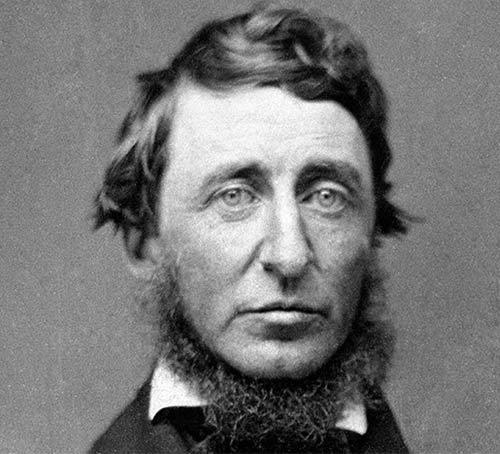 Henry David Thoreau Adventure quote