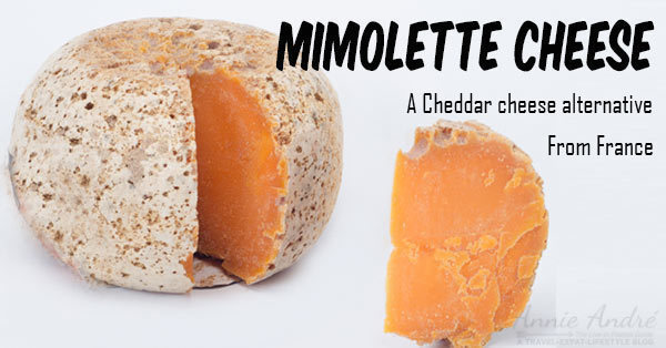 Mimolette cheese from France as an alternative to cheddar cheese