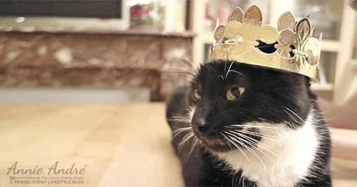 Our cat got to wear the crown from our king cake