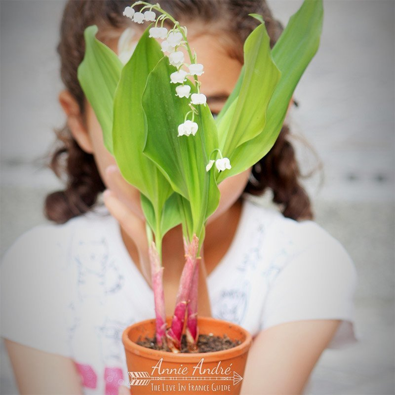 It's tradition to give loved ones and friends a flower called LIly of the Valley flower (Muguet) in France on May day; May 1st