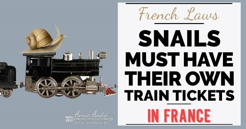 Funny French law: Even snails must have a paid ticket to ride the train in France