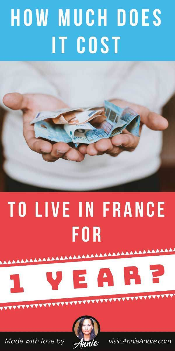 pintrest pin about Cost of Living In France