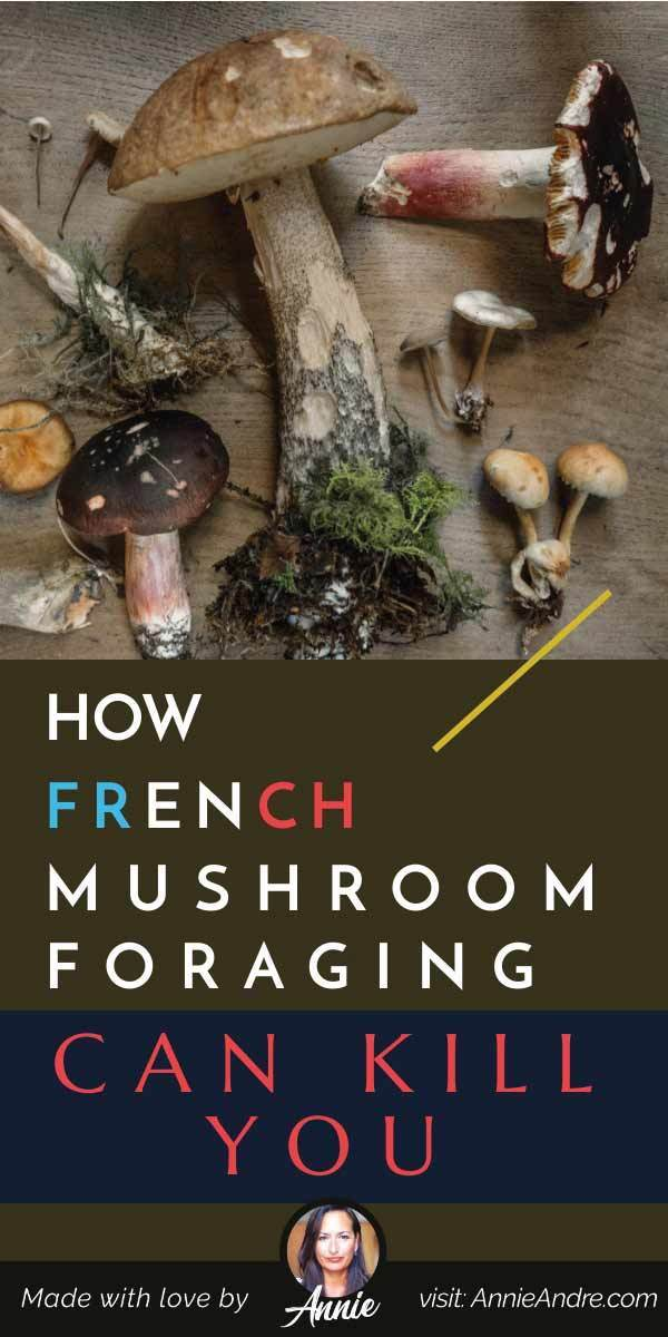 Pintrest pin about Mushroom foraging in France
