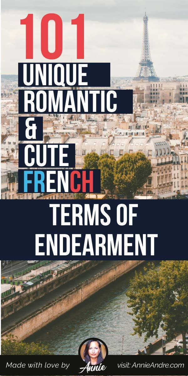 pintrest pin about Cute And Romantic French Terms of Endearment