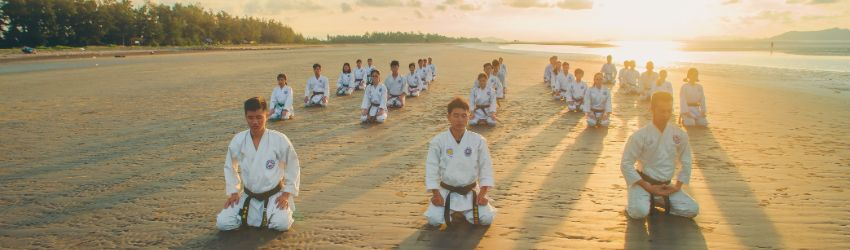How many martial arts schools are in America?