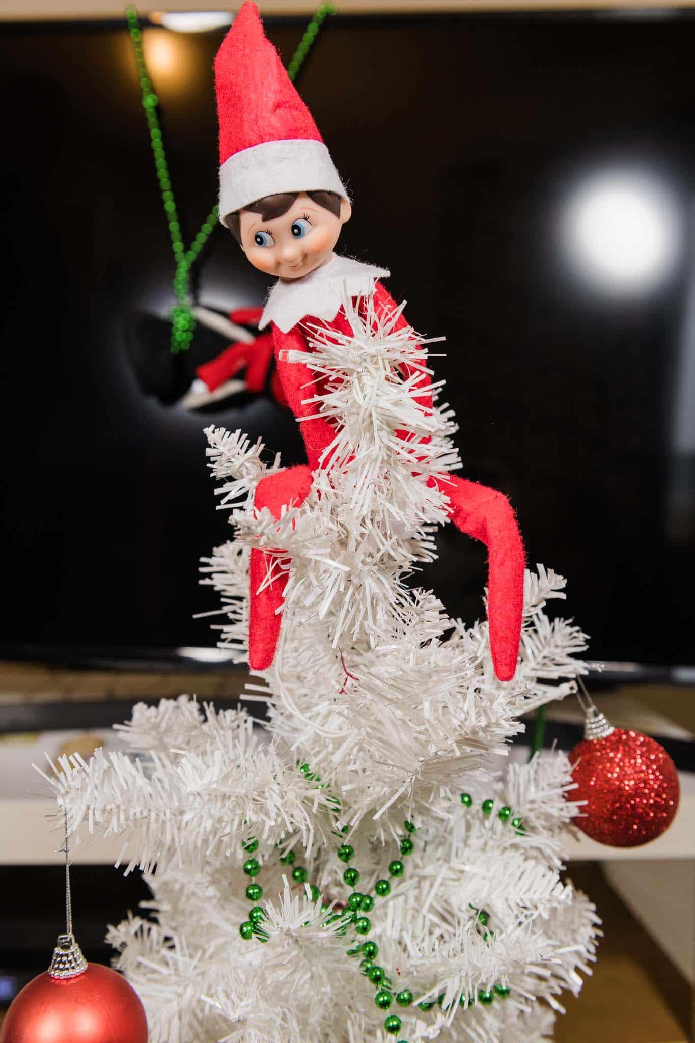 elf on the shelf climbing the christmas tree