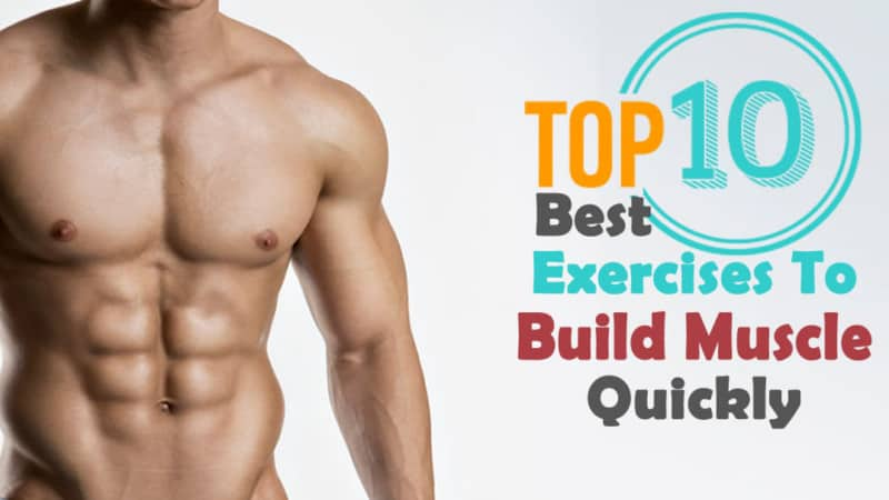 top 10 exercises to build muscle