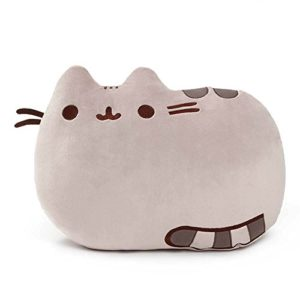 pillow plush