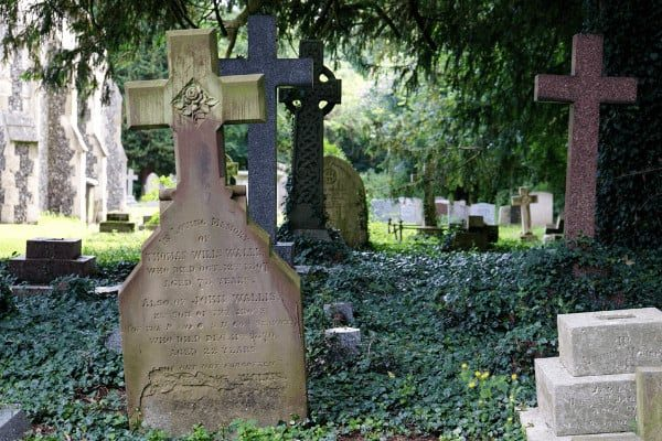 Historical Death Records and What They Reveal