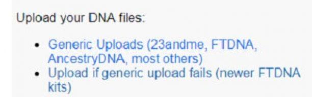 GEDMatch Upload Raw Data image