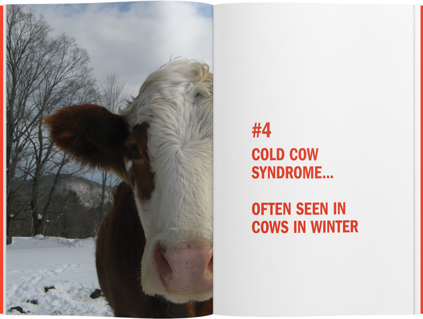 It Shouldn't, but it Did! Cold Cow Syndrome.