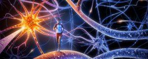 Gesundheit und Fitness 15
