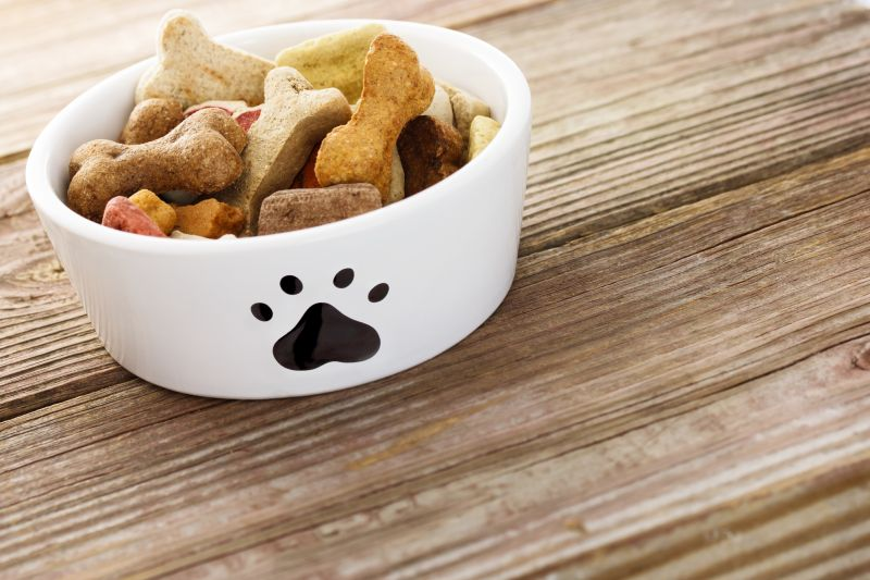 Dog food in a bowl on wooden table